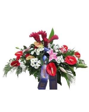 Palma fúnebre