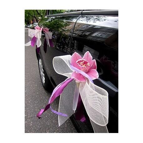 Orquídeas. Coche novia